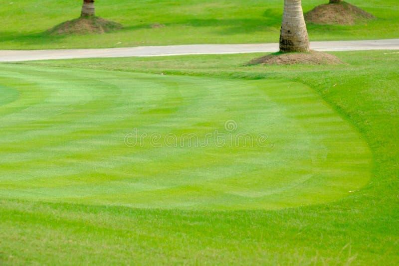 Fondo del putting green en campo de golf imagen de archivo libre de regalías