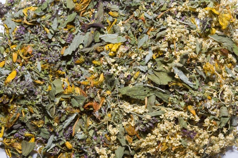 Fondo del té imagenes de archivo