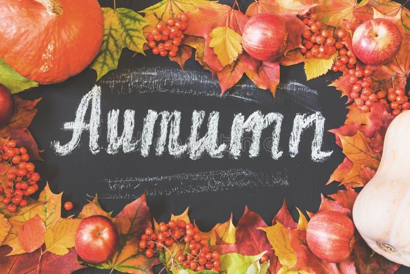 Fondo del tema del otoño con las hojas de arce, las manzanas y la calabaza cosecha imagenes de archivo