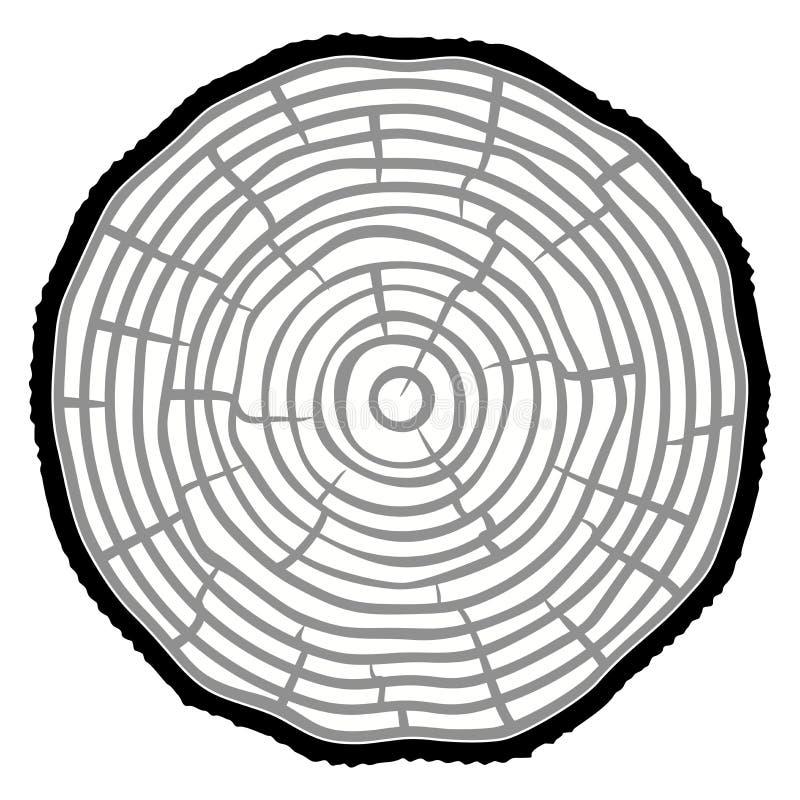 Fondo del tronco de árbol del corte de la sierra de los anillos de árbol Ilustración del vector libre illustration