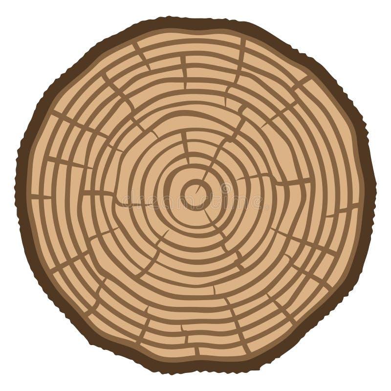 Fondo del tronco de árbol del corte de la sierra de los anillos de árbol Ilustración del vector stock de ilustración