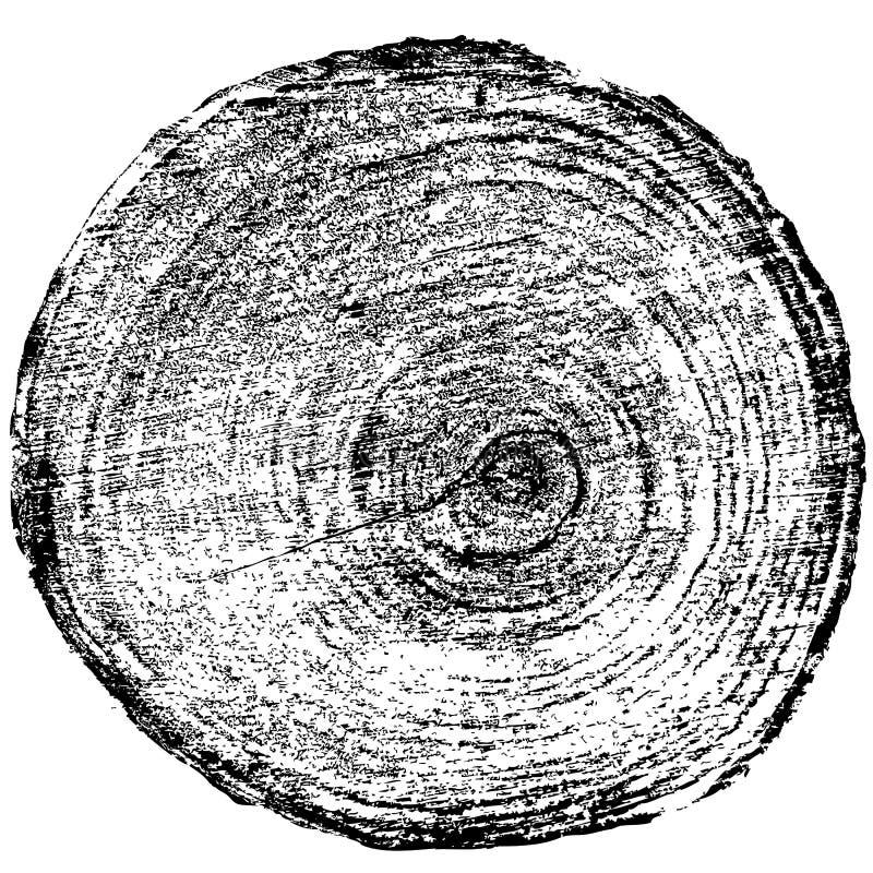 Download Fondo Del Tronco De árbol Del Corte De La Sierra De Los Anillos De árbol Vector Ilustración del Vector - Ilustración de edad, fondo: 64200349