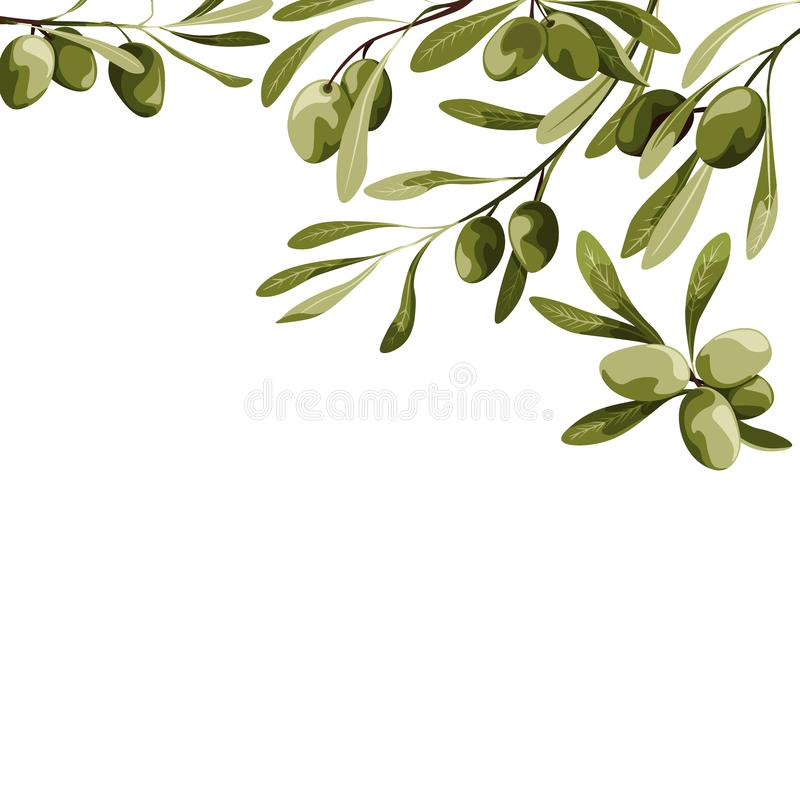 Fondo del vector con la decoración del olivo Ejemplo de la comida del vegano stock de ilustración