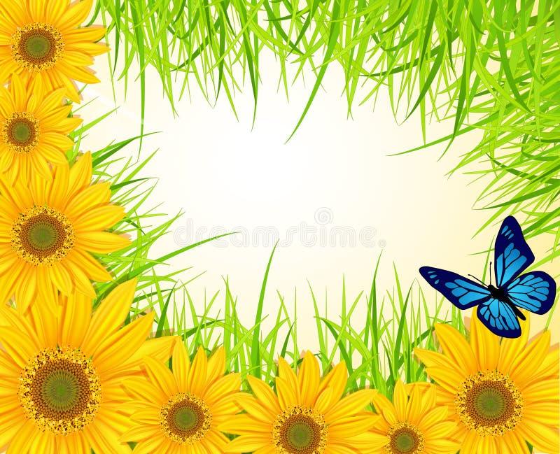 Fondo del vector con los girasoles amarillos ilustración del vector
