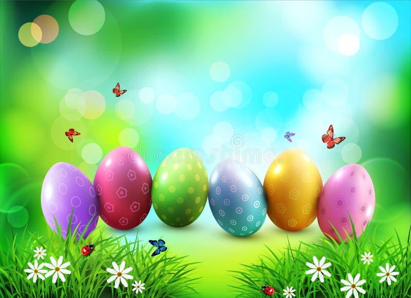 Fondo del vector Huevos de Pascua en hierba verde con las flores blancas stock de ilustración