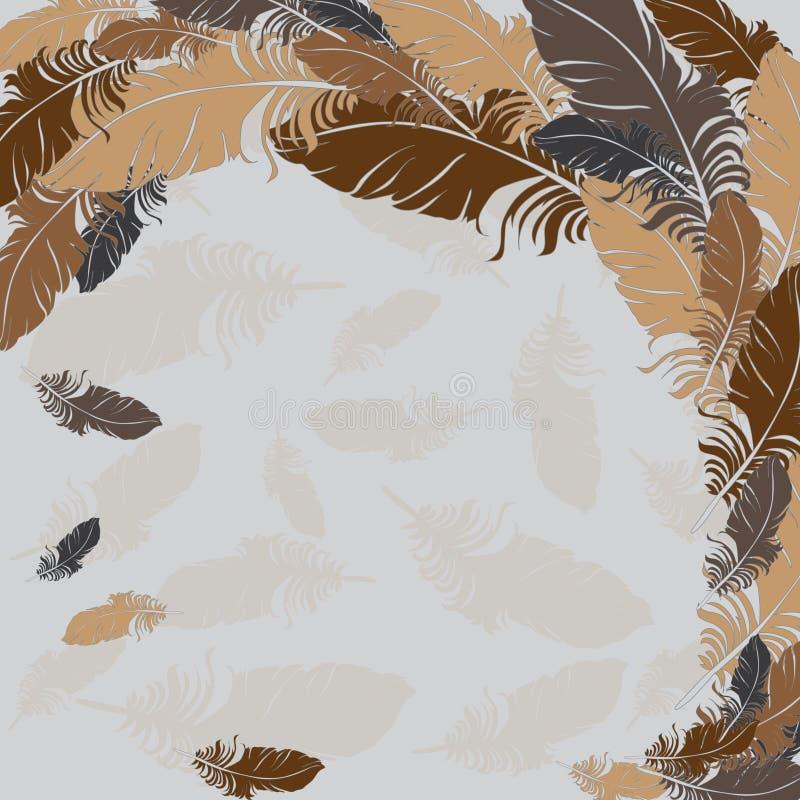 Fondo del vector marrón de las plumas libre illustration