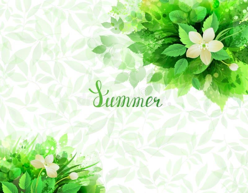 Fondo del verano con la composición de ramas con las hojas verdes frescas libre illustration