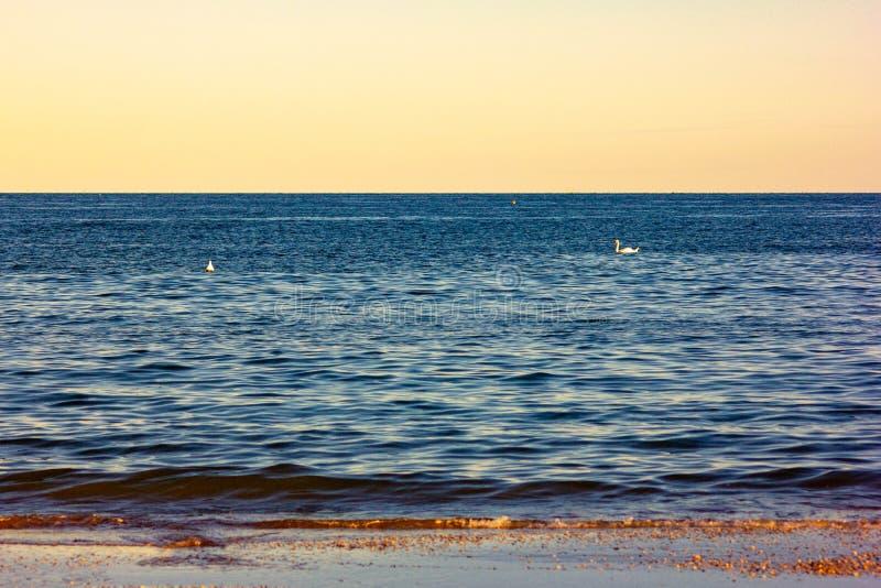 Fondo del verano foto modificada con la saturación de la playa y mar con el umbrellon fotos de archivo
