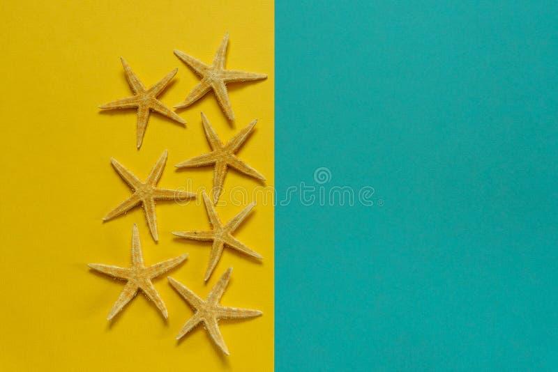 Fondo del verano del papel amarillo y azul con las estrellas de mar, símbolo fotografía de archivo libre de regalías