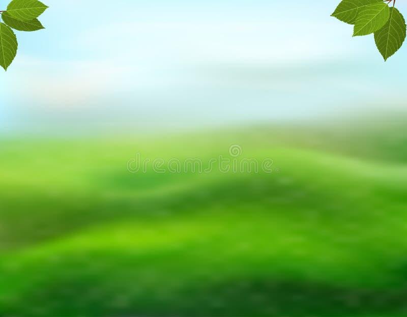 Fondo del verde de la naturaleza con las hojas frescas en un fondo borroso de la hierba y del cielo La visión con el espacio de l stock de ilustración