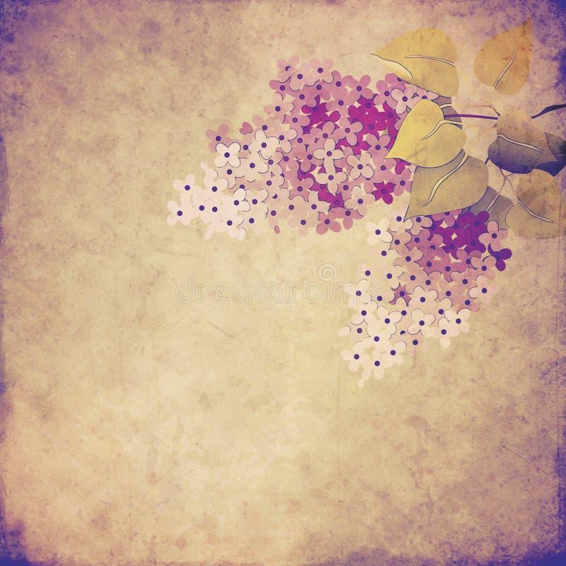 Fondo del vintage con la rama de la lila ilustración del vector