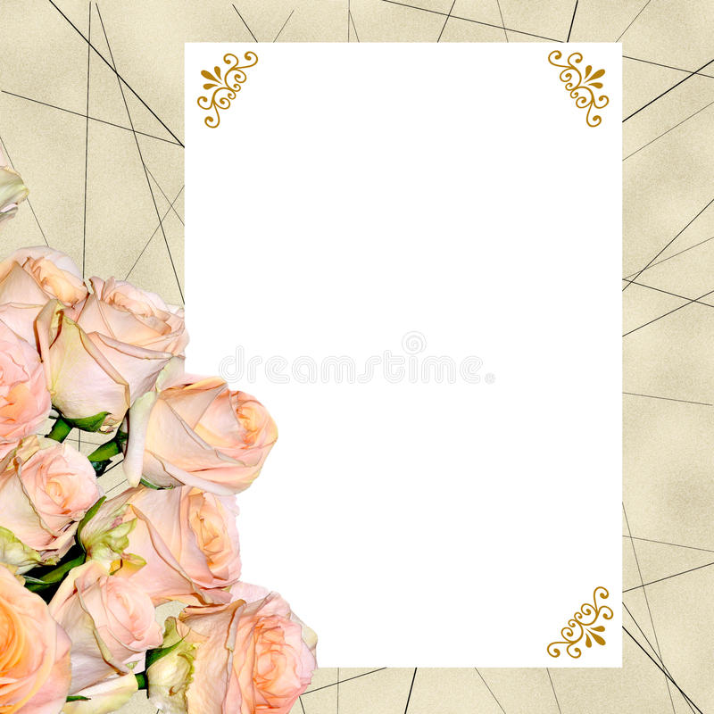 Fondo del vintage con las rosas cremosas y la tarjeta en blanco stock de ilustración