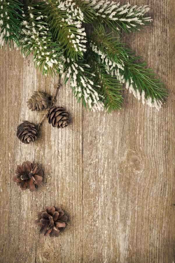 Fondo del vintage de la Navidad (con las ramas y los conos del abeto) foto de archivo