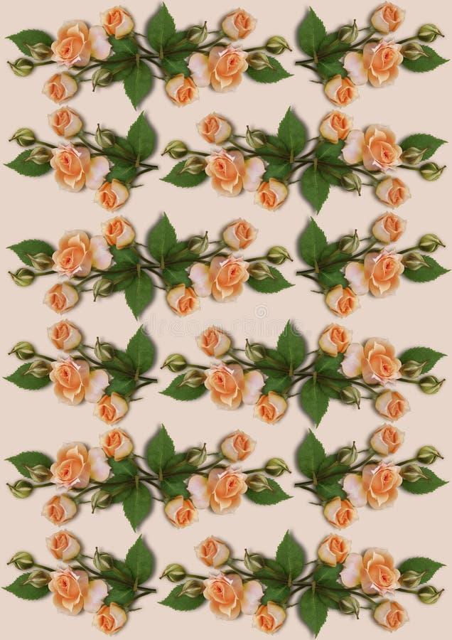Fondo delicado con las guirnaldas de rosas anaranjadas stock de ilustración