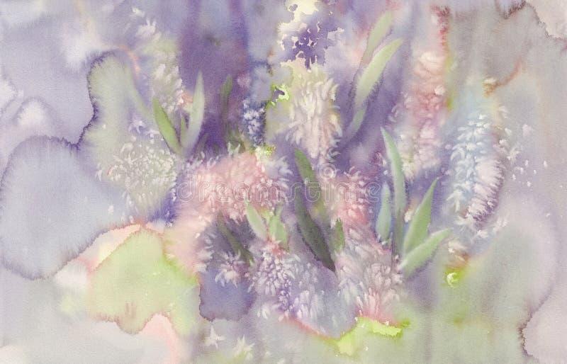 Fondo dell'acquerello dell'estratto del fiore del giacinto di Rosa illustrazione vettoriale