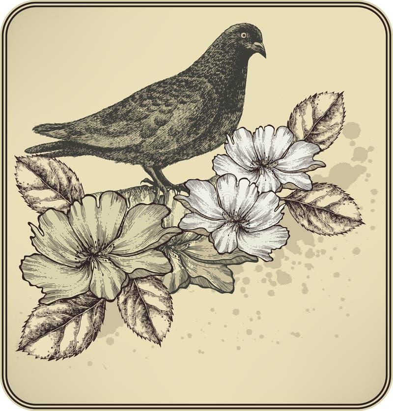 Fondo dell'annata con la colomba dell'uccello ed il ROS di fioritura illustrazione vettoriale