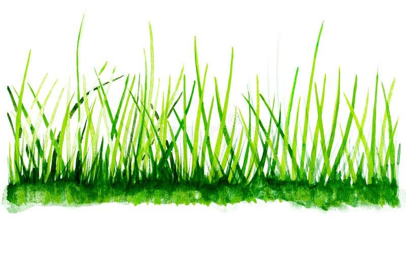 Fondo dell'erba dell'acquerello royalty illustrazione gratis