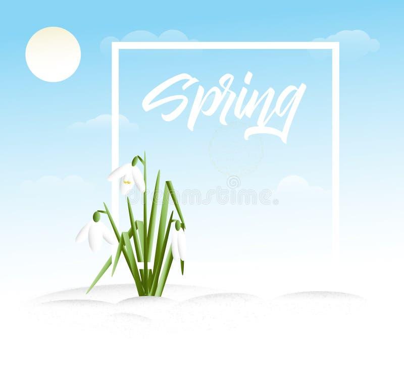 Fondo dell'erba di vettore della primavera illustrazione di stock