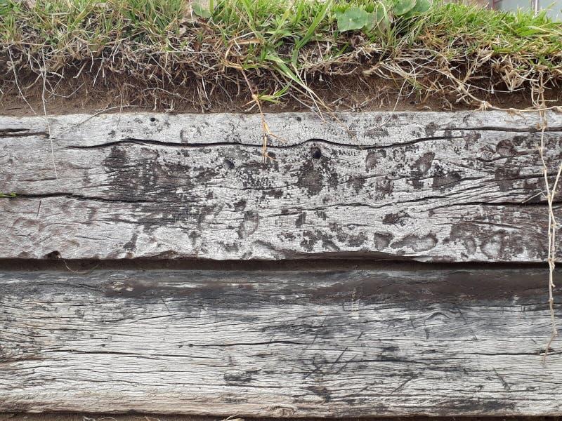 Fondo dell'erba e di legno fotografia stock