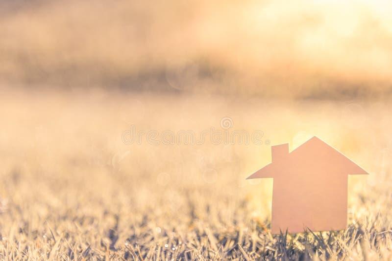 Fondo dell'erba: Erba verde astratta dello sfondo naturale con un bello bokeh fotografia stock