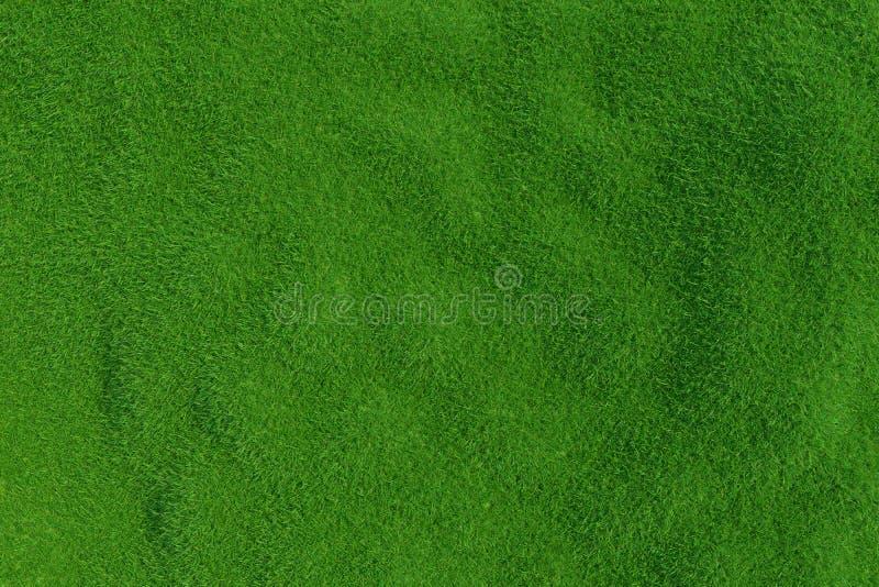 Fondo dell'erba verde Sfondo naturale Vista superiore rappresentazione 3d immagini stock