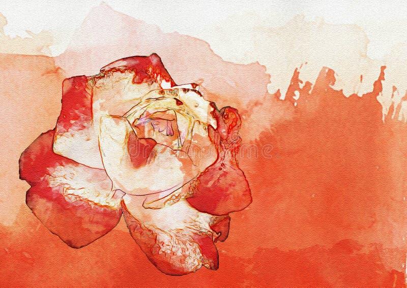 Fondo dell'estratto della rosa rossa dell'acquerello illustrazione di stock