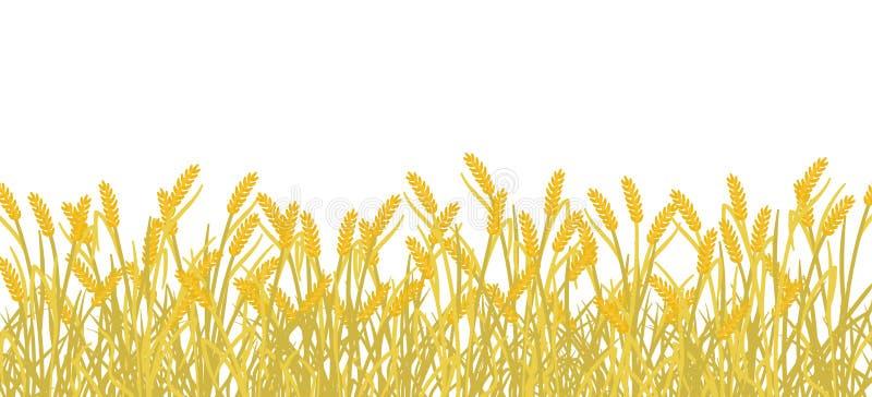 Fondo dell'insegna del giacimento della segale del cereale Erba agricola della pianta di autunno dell'oro giallo Illustrazione di royalty illustrazione gratis