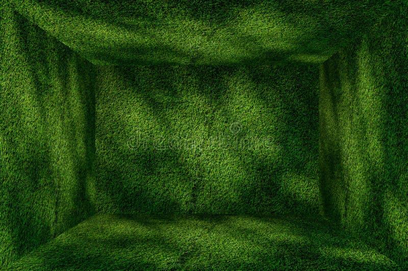Fondo dell'interno della parete e del pavimento di verde di erba di prospettiva fotografia stock