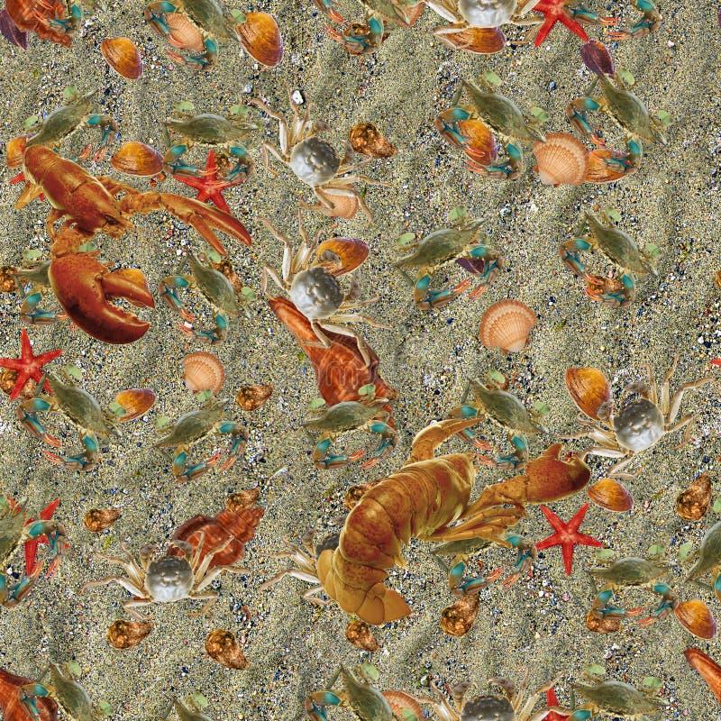 Fondo dell'oceano fotografie stock libere da diritti