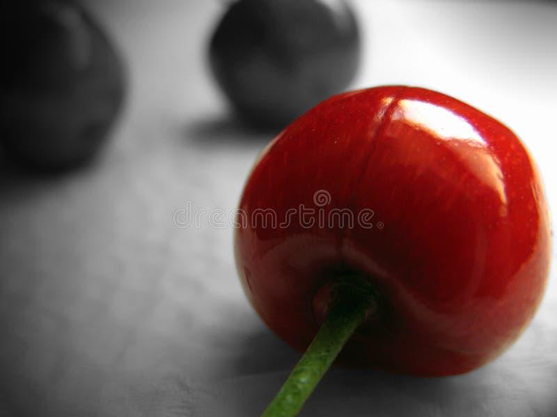 Fondo della ciliegia in bianco e nero fotografia stock libera da diritti