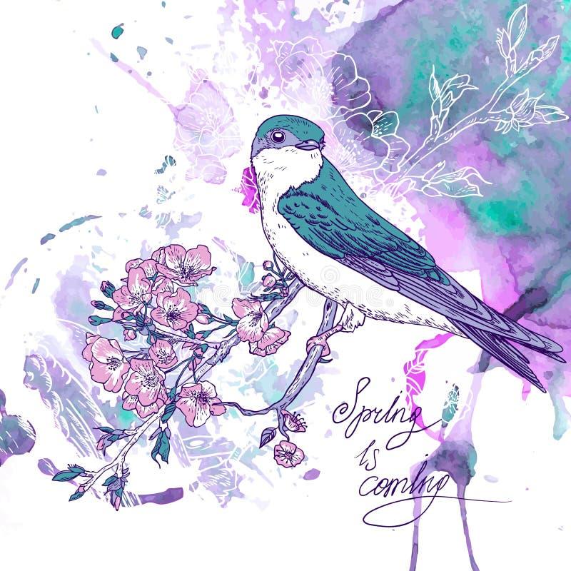 Fondo della ciliegia della primavera con gli uccelli royalty illustrazione gratis