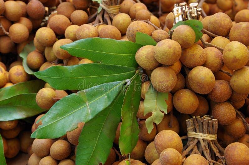 Fondo della frutta del Longan fotografie stock libere da diritti