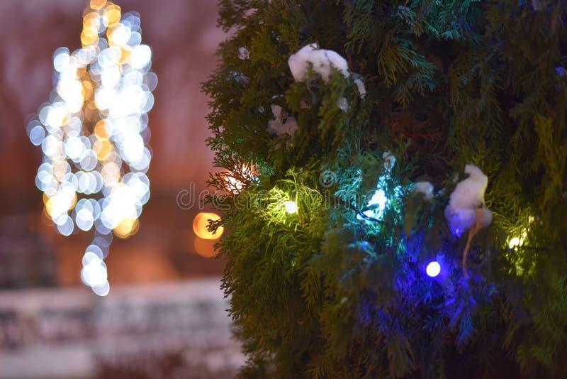 Fondo della luce di Natale Decorato con gli alberi della ghirlanda Contesto d'ardore di festa durante la notte defocused fotografia stock libera da diritti