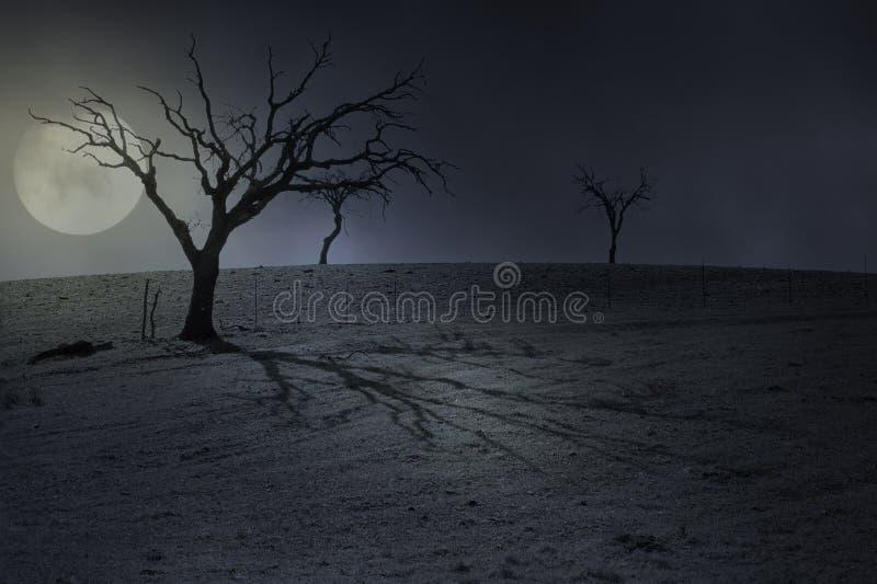 Fondo della luna piena di Halloween fotografia stock libera da diritti