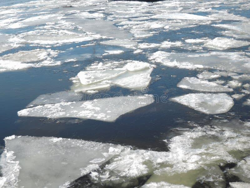 Fondo della natura di inverno con i blocchi di ghiaccio su acqua congelata in primavera fotografia stock