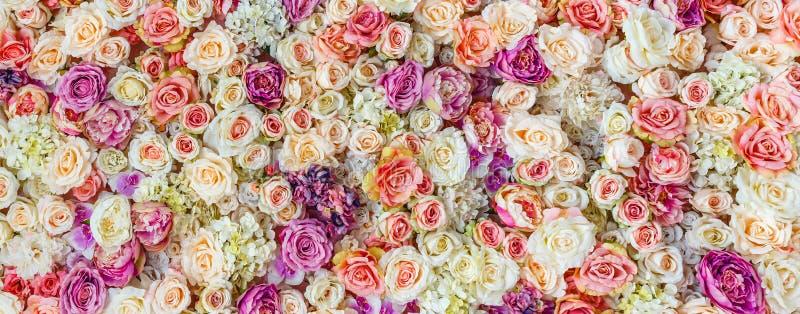 Fondo della parete dei fiori con lo stupore delle rose rosse e bianche, decorazione di nozze immagine stock