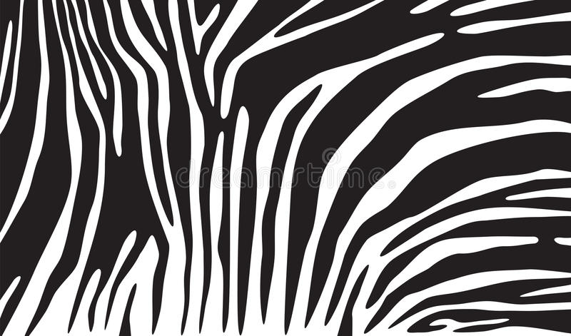 Fondo della pelle della zebra illustrazione vettoriale