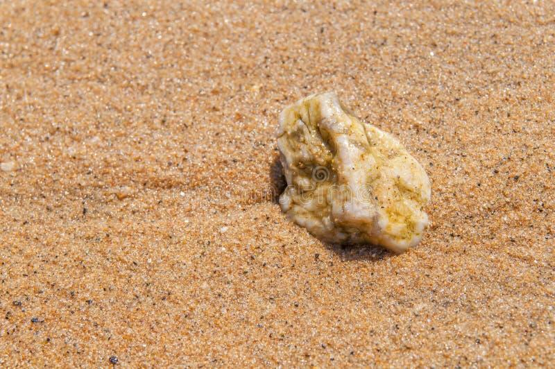 Fondo della pietra del ciottolo del mare fotografia stock