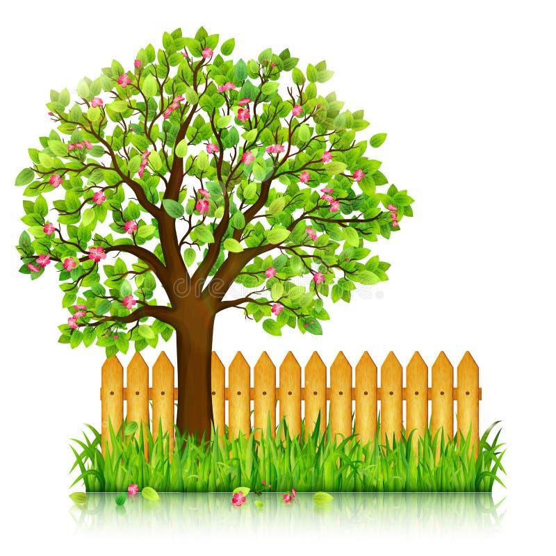 Fondo della primavera con erba verde, albero sbocciante illustrazione vettoriale