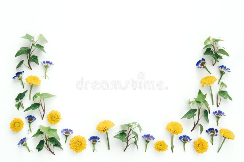 Fondo della primavera con i fiori gialli e porpora immagine stock libera da diritti