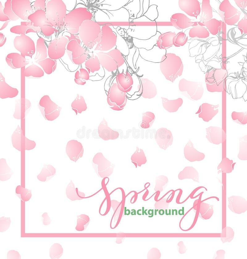 Fondo della primavera con i fiori sboccianti di Apple Modello di vettore royalty illustrazione gratis