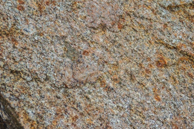 Fondo della roccia eruttiva chiazzata del granito La struttura del grani fotografia stock libera da diritti