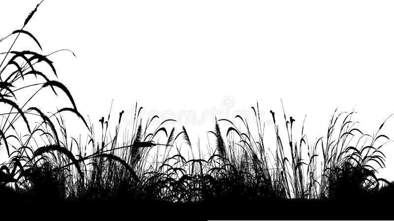 Fondo della siluetta dell'erba royalty illustrazione gratis