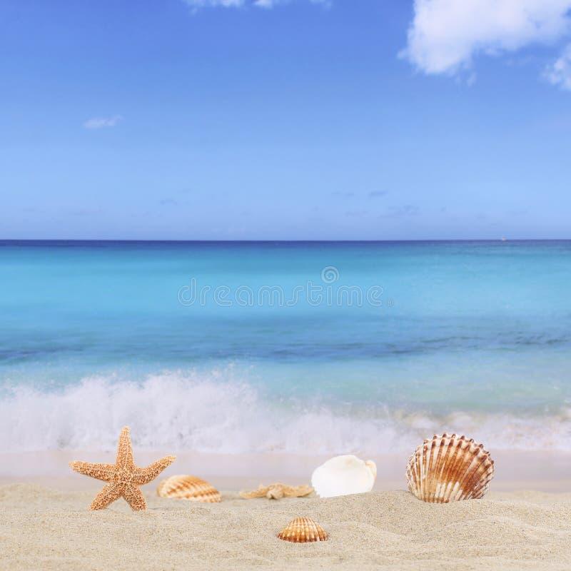 Fondo della spiaggia sabbiosa nelle feste di vacanze estive con il mare e fotografia stock