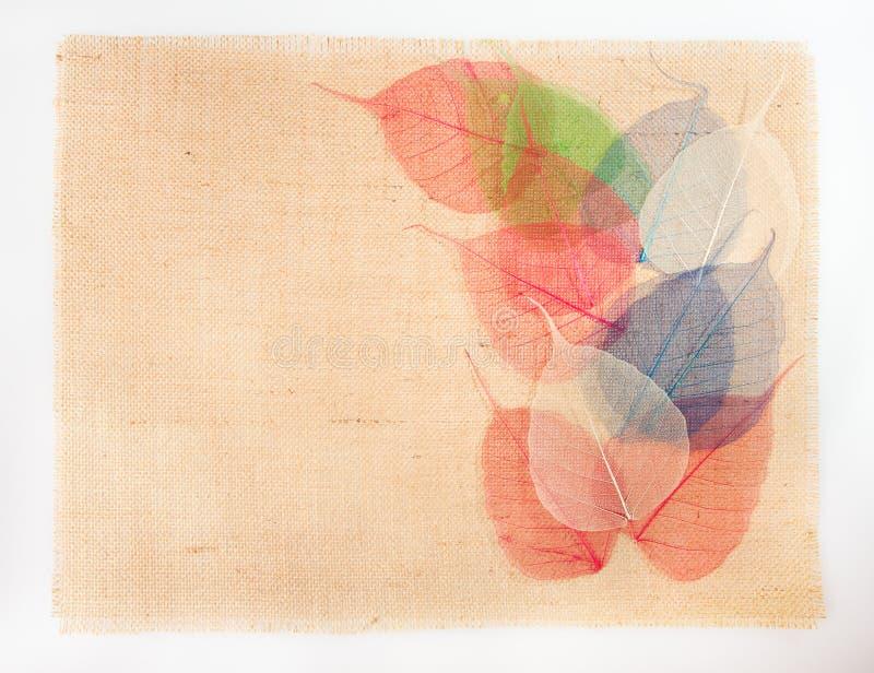 Fondo della tela da imballaggio della tela di sacco, decorazione multicolore delle foglie fotografie stock