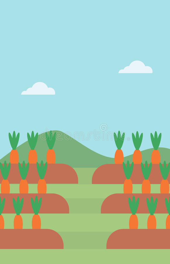 Fondo delle carote che crescono sul campo illustrazione vettoriale