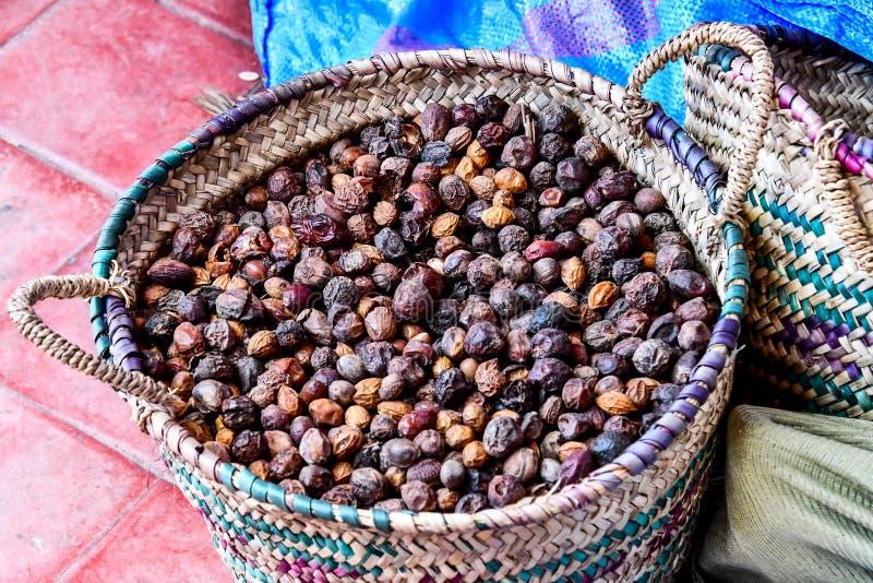 fondo delle coperture dei semi dell'argania spinosa, foto come fondo immagini stock