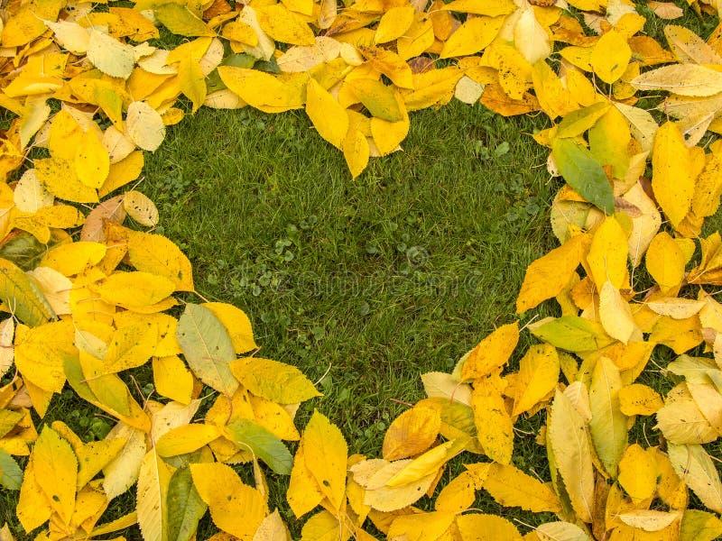Fondo delle foglie di autunno con cuore fotografia stock libera da diritti