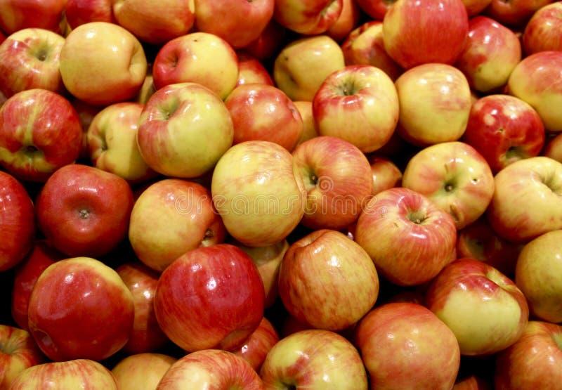 Fondo delle mele fotografie stock libere da diritti