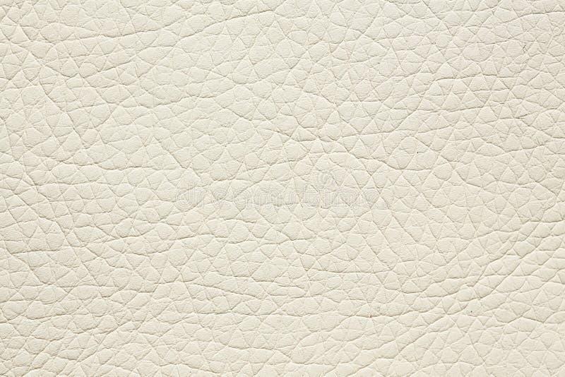 Fondo delle similpelle nel colore bianco fresco Struttura di alta qualit? in estremamente di alta risoluzione immagine stock libera da diritti